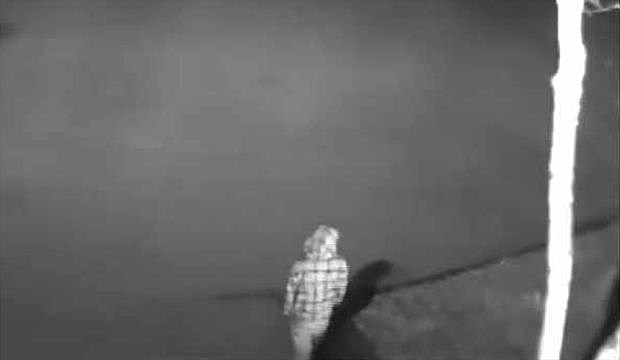 Surveillance image of arsonist Boone and Crockett Club