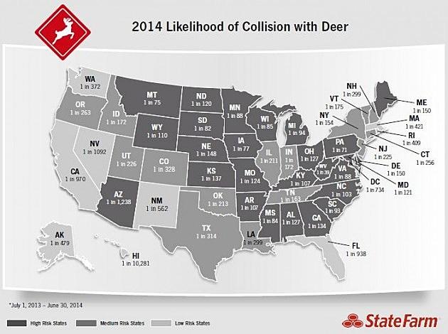 Deer Collision Map