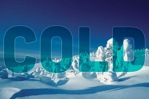 Montana Shots - Cold